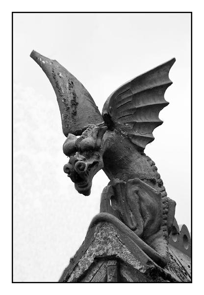 black-dragon.jpg