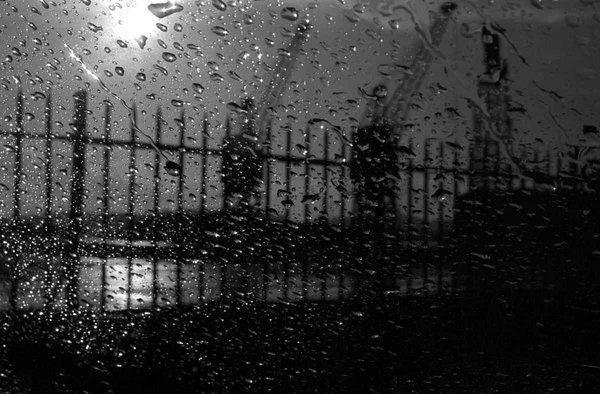 02-cranes-in-the-rain.jpg