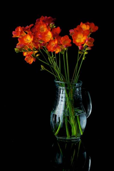 flowers-indoors--2-of-13-.jpg