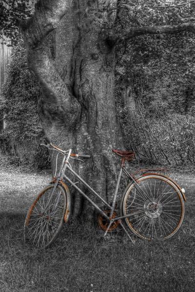 bwbike-r.jpg