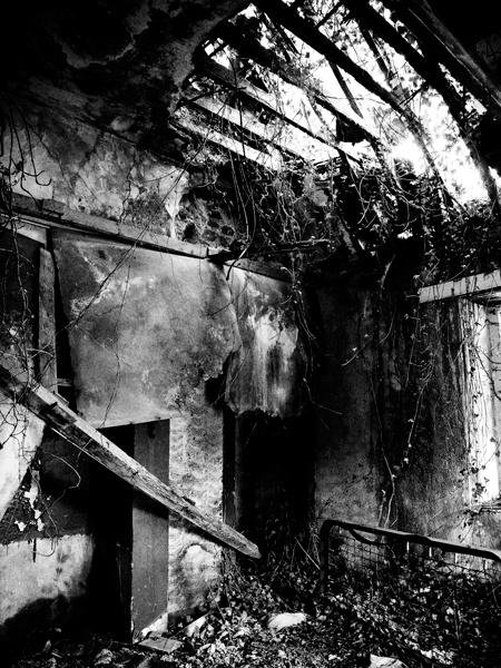 jonny-mountpanther-gate-house.jpg