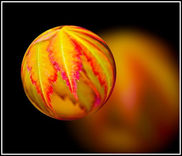the-autumn-ball.jpg