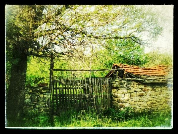garden-gate-in-seradlevo.jpg