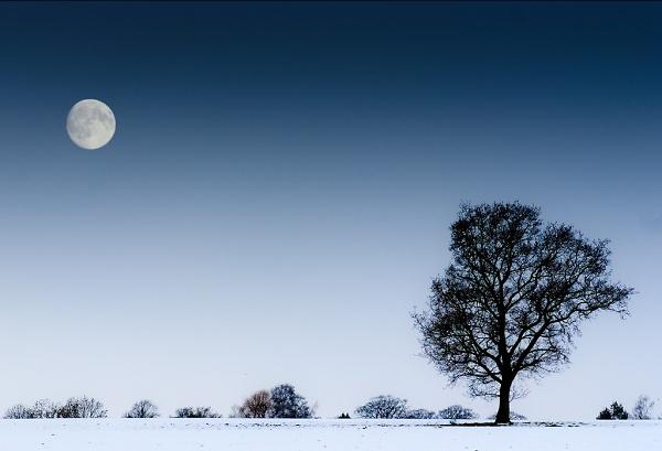 moon-rise-.jpg
