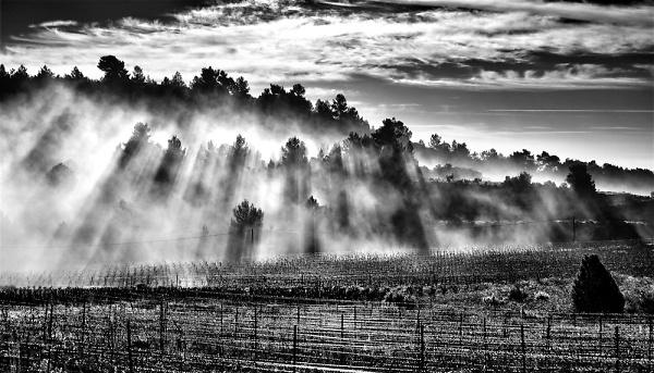 2-0350-la-bade-in-the-mist-pe.jpg