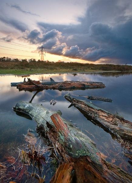 turf-hill---logs-in-water-fg-interest.jpg
