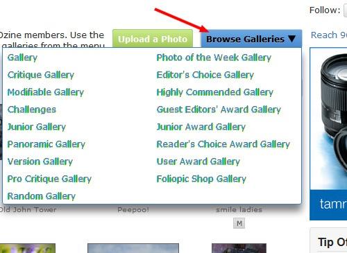 photography-gallery---ephotozine-members-photo-gallery-2012-07-13-09-39-15.jpg