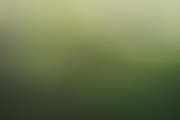 img-1493-filtered.jpg