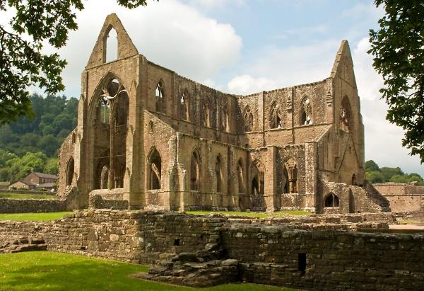 tintern-abbey-23-06-09-----8.jpg
