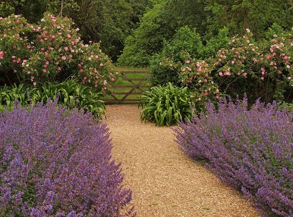 1-tintinhull-garden-and-village-ew--002.jpg