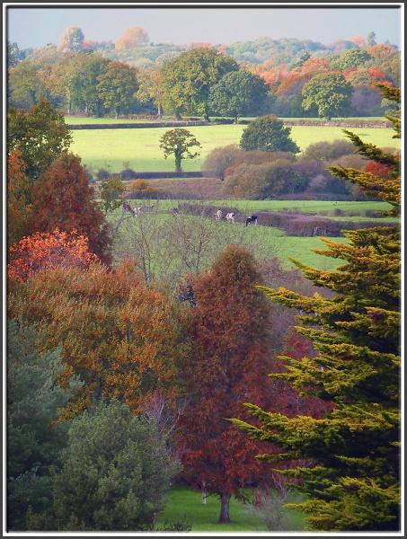 4-england-in-autumn.jpg