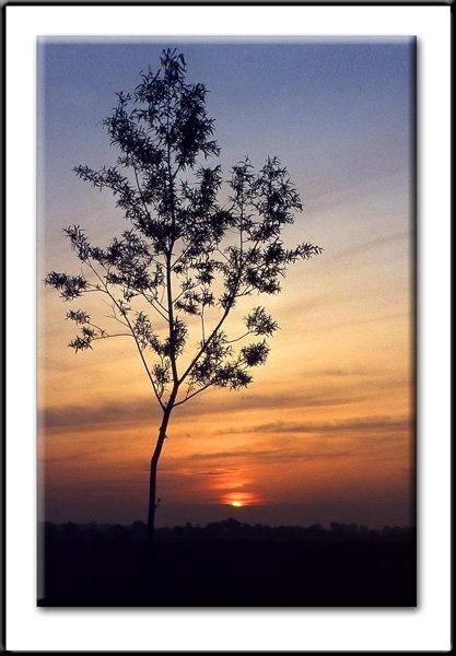 sunset-a.jpg