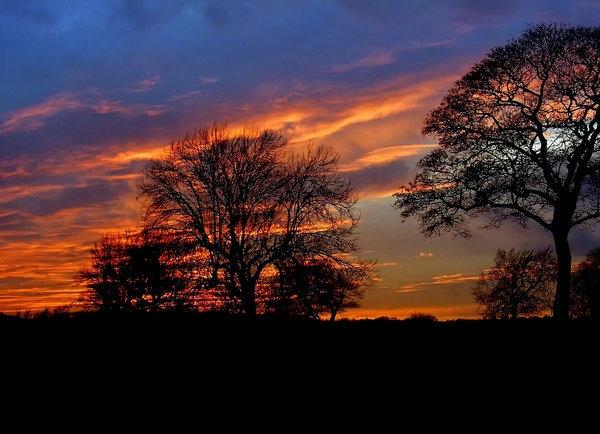 1-sunset-pf-.jpg