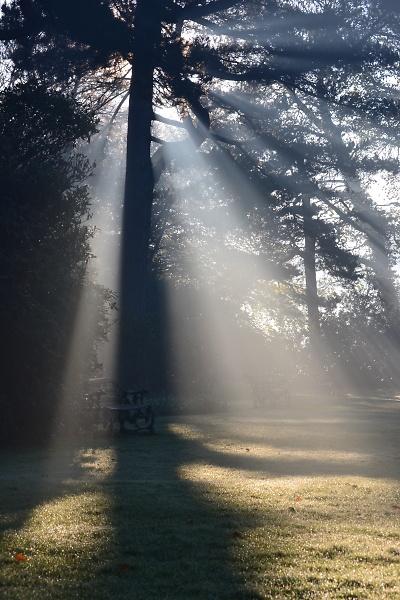 rufford-old-hall-autumn-misty-morning-050.jpg