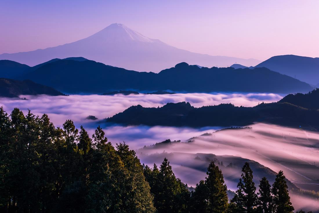Mt. Fuji Above the Clouds